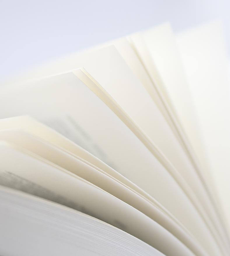 Buchseiten